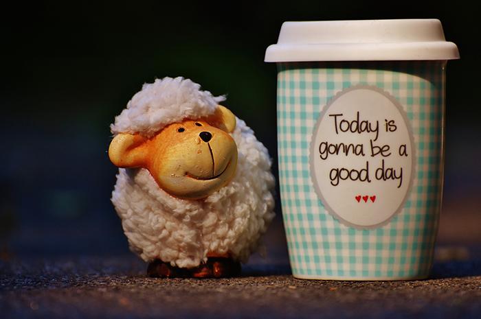 コーヒーと羊