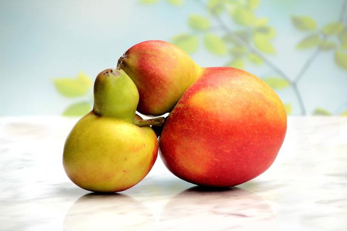 フルーツのカップル