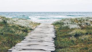 海辺の小道
